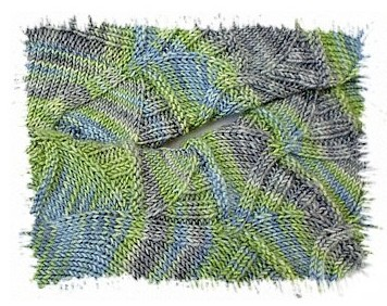 STR Algae Ausschnitt