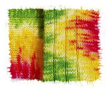 Tausendschön Iris Haase Ausschnitt I