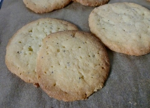 Lemon-Poppy-Seed Cookies